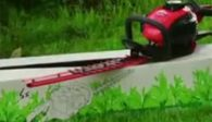 Mountfield hedge trimmer