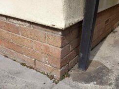 Rising damp issues
