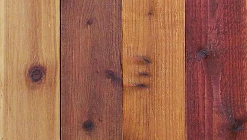 Diffe Types Of Varnish And Wood Stain How To Use Them Diy Doctor