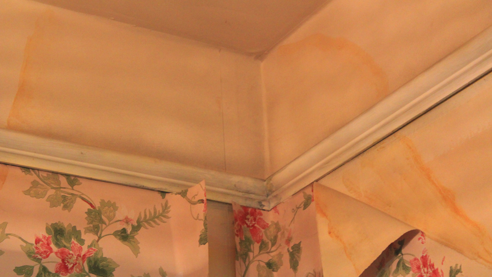 How To Stop Stains Coming Through Emulsion Including Blocking Damp Diy Doctor