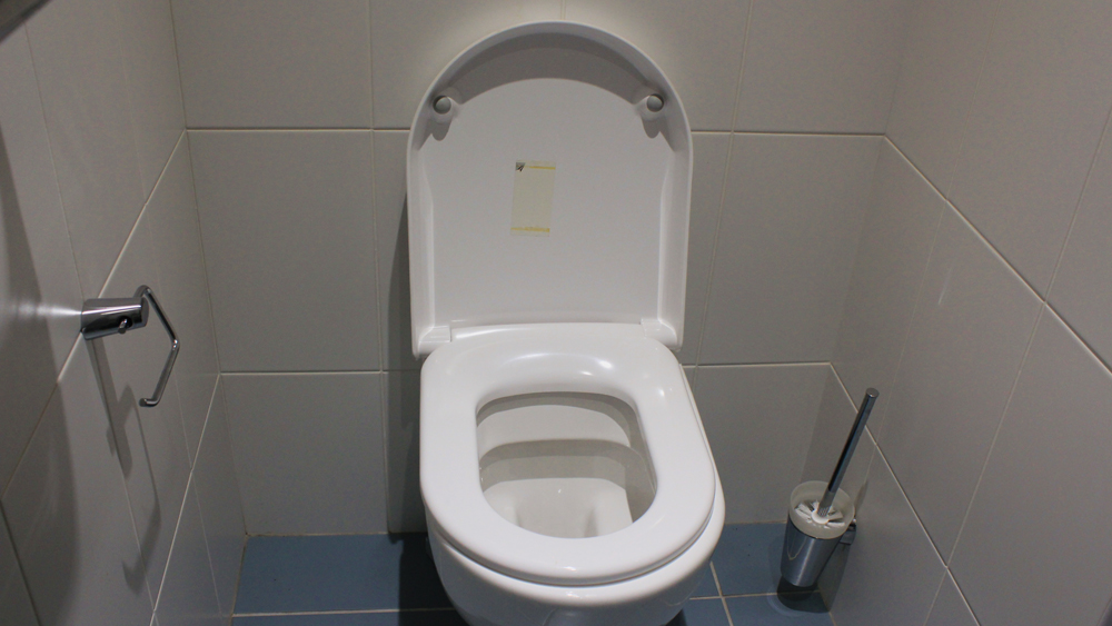 Groovy Fitting A Toilet Seat And Replacing A Loo Seat Diy Doctor Evergreenethics Interior Chair Design Evergreenethicsorg