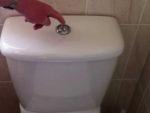 My Toilet Wont Flush