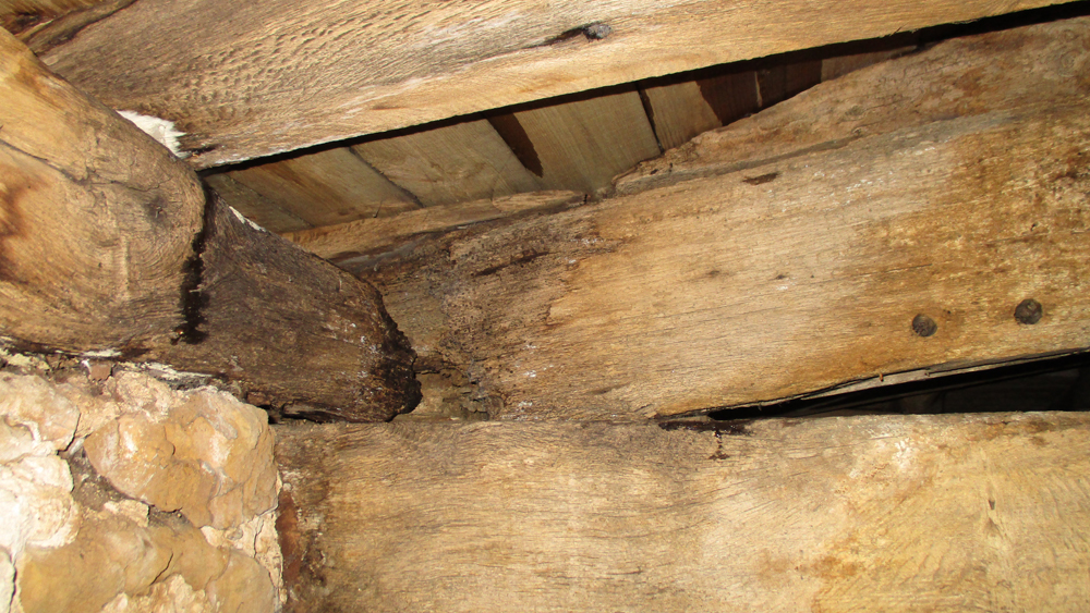 Timber Repair And Treating Timber Decay And Damage Dry