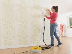 Using a Wallpaper Stripper