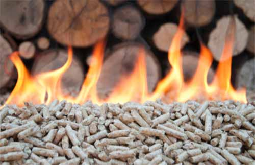 Wood pellets for biomasss boiler
