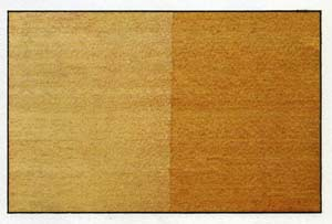 African Whitewood
