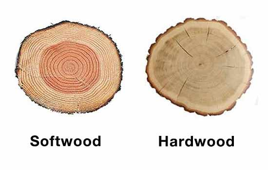 Hardwood and softwood comparison
