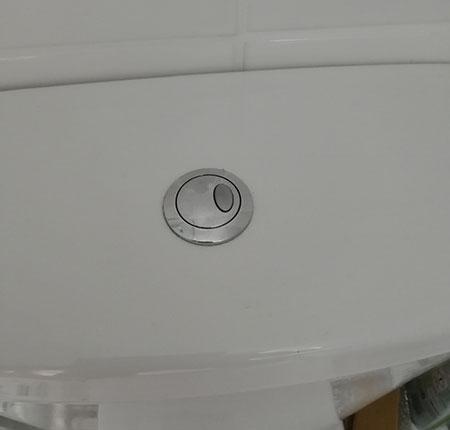 Modern style push button cistern