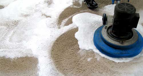 Shampoo cleaning a carpet