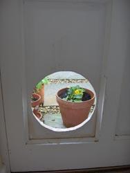 Hole in Door