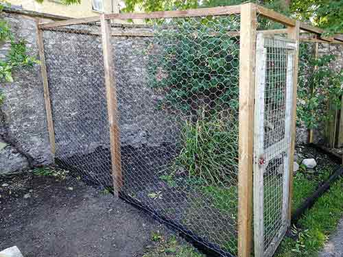 Gradually fix chicken wire in place with fence staples