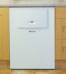 Floor mounted boiler