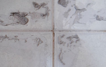 How To Remove Hard Grout From Tiles Removing Cement Grout From - Cleaning grout off porcelain tile