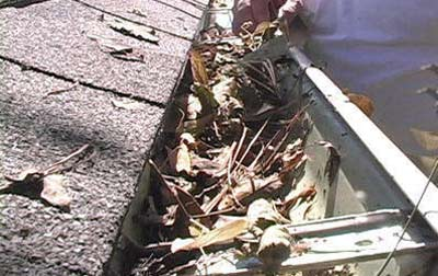 Gutter blocked with leaves