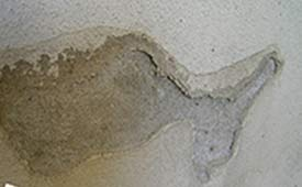 Salt deposits caused by damp can blow the plaster in your wall