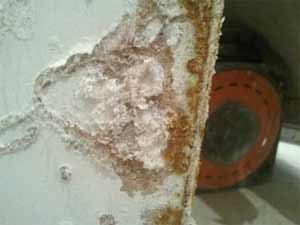 Salts can damage your plaster and blow it off of the wall