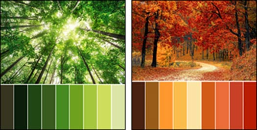 Colour Theory And Using A Colour Wheel For Interior Design