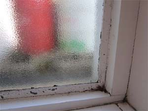Condensation causes black mould or mildew around window frames and recesses