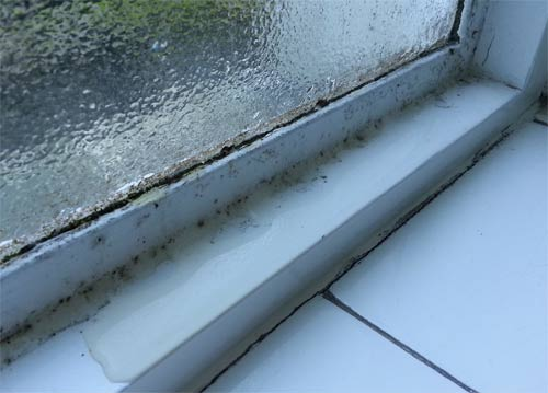 Condensation running off window and on to ledge