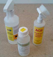 Remove the mould from your wall using mould cleaner