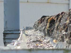 Blocked guttering can cause water to overflow onto your walls