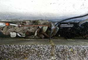 Remove any debris from your cavity to prevent water ingress