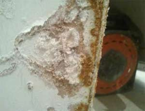 Salts can blow plaster off your walls