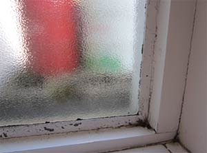 Draught proof your windows and doors to reduce condensation
