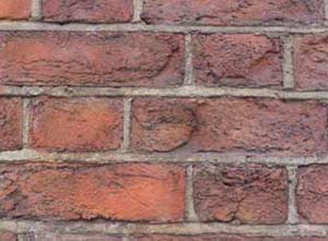 Check your brickwork for any cracks could be allowing damp in