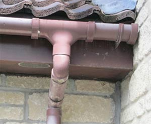 Replace any cracked pieces of guttering to reduce your walls' exposure to damp