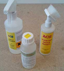 Use some mould cleaner to remove the mould from your walls