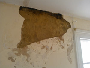 If you have salts present in your walls you will need to strip the plaster off