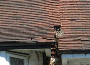 Replace any broken or missing roof tiles as these may be causing your damp
