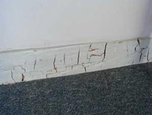 Dry rot causes cube shaped cracks in your wood