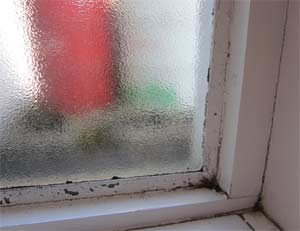 Damp problems can give rise to Dry Rot