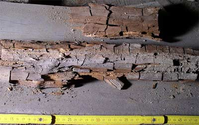 Dry rot if left untreated can cause your wood to crumble away