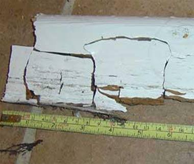 Dry Rot Causing Cracking in Timber