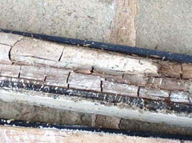 Wet Rot Causing Cracking in Timber