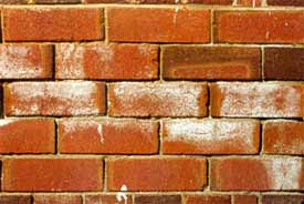 Damaged Brickwork caused by efflorescence on brick