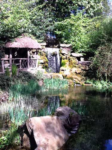 Garden pond with water fall