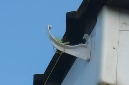 Gutter bracket fixed in place