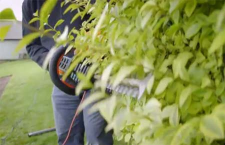 Cutting a hedge using electric trimmers