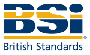 The BSI British Standards Institute