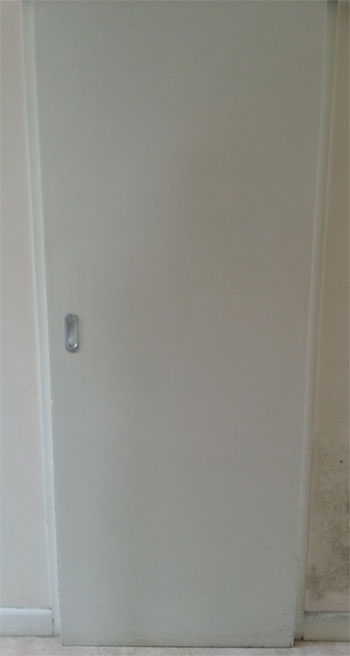 Flush door