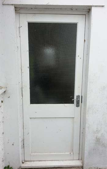 Panel door with reinforced glass pane