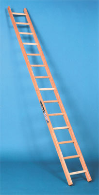 Single section wooden ladder