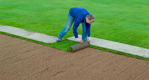 Laying turf from a board