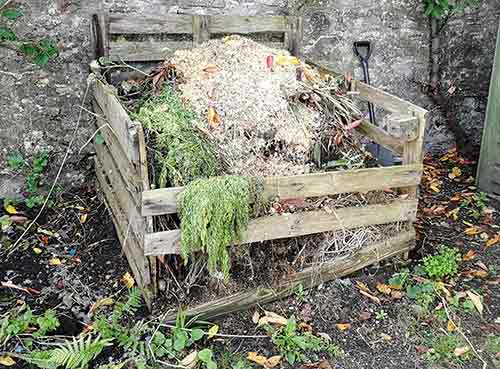 Rotten timber compost heap