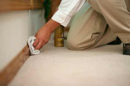 Clean off your skirting after sanding