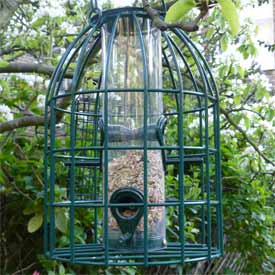 Bird feeder with squirrel cage, filled with seeds and loose bird food